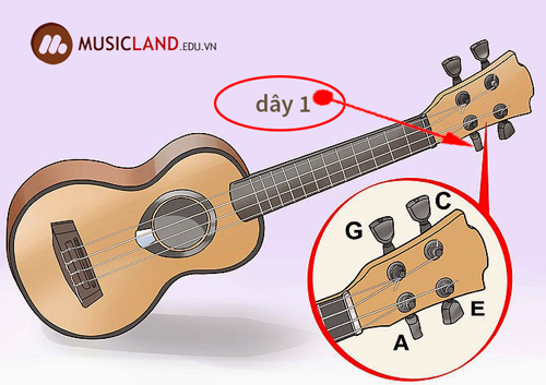 chinh day so 1 dan Ukulele